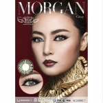Morgan Gray Dreamcolor1เลนส์นิ่มใส่สบาย คอนแทคเลนส์ ขายส่งคอนแทคเลนส์ ขายส่งBigeye Bigeyeเกาหลี