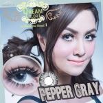 Pepper Gray Dreamcolor1 คอนแทคเลนส์ ขายส่งคอนแทคเลนส์ Bigeyeเกาหลี ขายส่งตลับคอนแทคเลนส์ ขายส่งน้ำยาล้างคอนแทคเลนส์