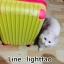กระเป๋าเดินทางล้อลากไฟเบอร์ รุ่น colorful เหลืองขอบชมพู ขนาด 20/24/28 นิ้ว thumbnail 4