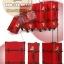 กระเป๋าเดินทางวินเทจ รุ่น spring colorful แดงคาดน้ำตาล ขนาด 22 นิ้ว thumbnail 1