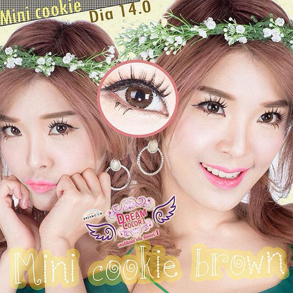 Mini cookie Brown Dreamcolor1 คอนแทคเลนส์ ขายส่งคอนแทคเลนส์ Bigeyeเกาหลี