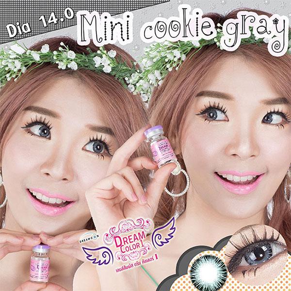 Mini Cookie gary Dreamcolor1 คอนแทคเลนส์ ขายส่งคอนแทคเลนส์ Bigeyeเกาหลี