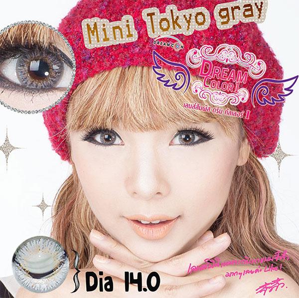 Mini Tokyo Gray Dreamcolor1 คอนแทคเลนส์ ขายส่งคอนแทคเลนส์ Bigeyeเกาหลี