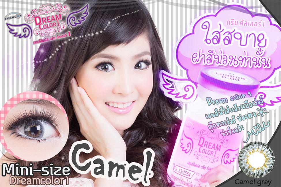 Camel Gray Dreamcolor1 คอนแทคเลนส์ ขายส่งคอนแทคเลนส์ Bigeyeเกาหลี ขายส่งตลับคอนแทคเลนส์