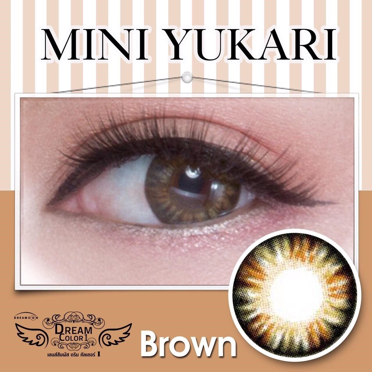 Mini Yukari brwon คอนแทคเลนส์ Dreamcolor1