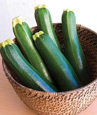 ซูกินี่สีเขียว - Dark Green Zucchini