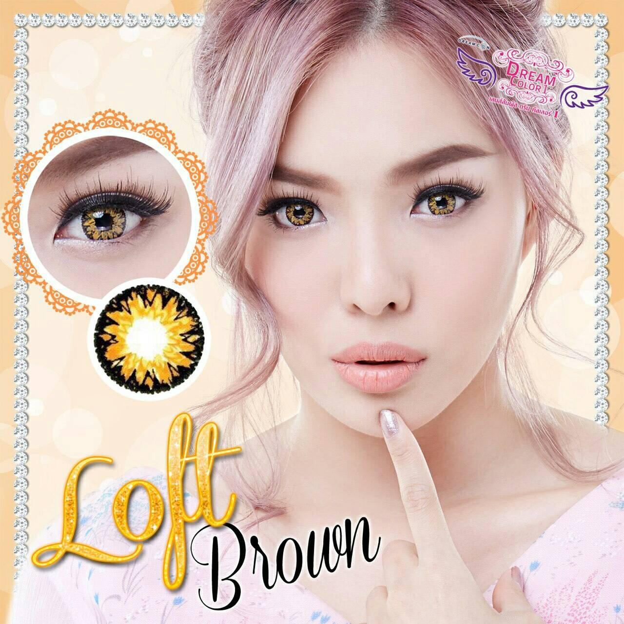 Loft Brown Dreamcolor1เลนส์นิ่มใส่สบาย คอนแทคเลนส์ ขายส่งคอนแทคเลนส์ ขายส่งBigeye Bigeyeเกาหลี