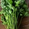 เซลารี่ทอลยูทาห์ - Celery Tall Utah 52/70