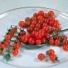 มะเขือเทศช้อนชา - Spoon Tomato