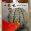 เมล่อนเหมยฮัว - Maiour Melon (พรีออเดอร์)