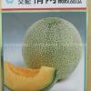 เมล่อนเลิฟ - Love Melon