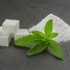 หญ้าหวาน - Stevia