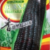 ข้าวโพดสีดำ - ฺBlack Corn