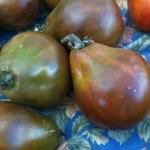 มะเขือเทศทรัฟเฟิลสีดำ - Black Truffle Tomato