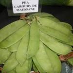 ถั่วลันเตาฝักใหญ่ - Carouby de Maussane Pea