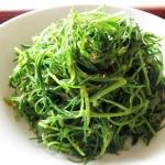 โอกะฮิจิกิ - Okahijiki (Salsola komarovii)