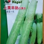 แตงกวาขาว - White Cucumber