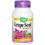 Nature's Way Premium Extract Grape Seed Standardized / 60 Vegi Caps
