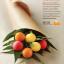 EOS Lip Balm Smooth Sphere : Sweet Mint กลิ่นมิ้นท์ ให้ความรู้สึกเย็น ชุ่มชื่น thumbnail 7