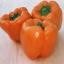 พริกหวานสีส้ม - Corall Bell Pepper thumbnail 1