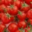 มะเขือเทศสวีทแอพเพอริทิพ - Sweet Aperitif Tomato (หวานมาก 13 Brix) thumbnail 4