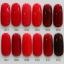 สีทาเล็บเจล EN.OU ยกเซ็ต 12ขวด โทนสีแดง RED WINE thumbnail 1
