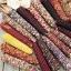 ข้าวโพดสีรุ้ง - Ornamental Indian Corn thumbnail 1