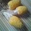 ข้าวโพดป๊อปคอร์นสับปะรดสีเหลือง - Pineapple Popcorn (หายากกว่าสีแดง) thumbnail 2