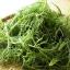 โอกะฮิจิกิ - Okahijiki (Salsola komarovii) thumbnail 4