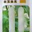บวบหอมสีขาว - Chinese White Jade Luffa thumbnail 3