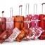 กระเป๋าเดินทางวินเทจ รุ่น spring colorful ชมพูคาดน้ำตาล ขนาด 22 นิ้ว thumbnail 4