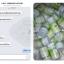 กลูต้าเมล่อน (Gluta Melon Wink By MRC) thumbnail 6