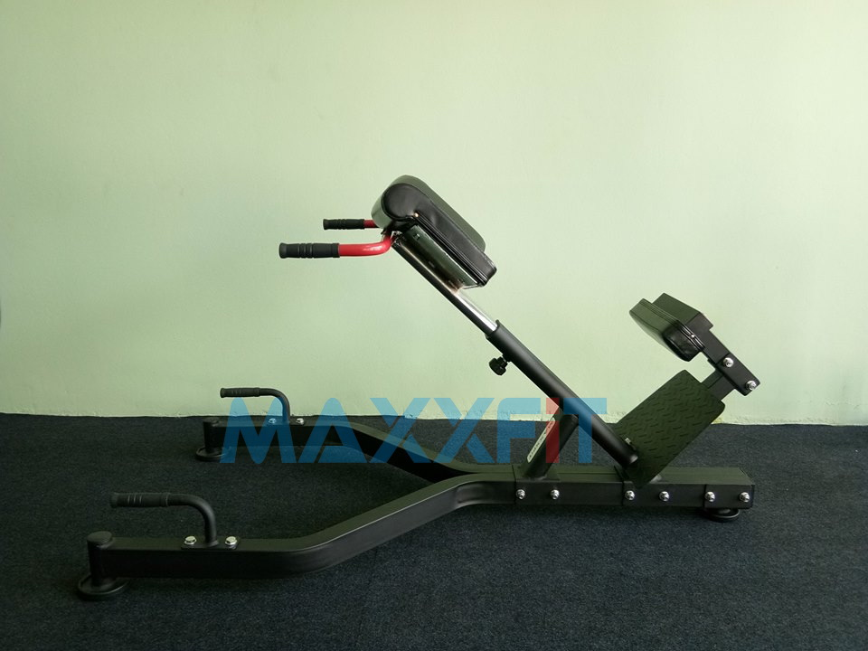 ขาย เก้าอี้บริหารเอวและหลัง Roman Chair MAXXFiT รุ่น MB802 45 Hyper Back Extension