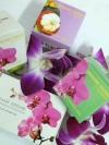 ครีมมาดามออร์คิดส์ Madame Orchid ฟื้นฟูผิวหน้า