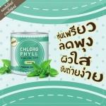 คลอโรมิ้นต์ Chloro Mint คลอโรฟิลล์ (Chloro Phyll Nature Fiber 100%)