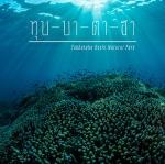 Tubbataha : มรดกโลกธรรมชาติ ดำน้ำดูปะการัง ที่ฟิลิปปินส์