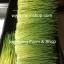 ต้นอ่อนข้าวสาลี ต้นอ่อนข้าวสาลีตัดสด Wheatgrass 1 Kg. thumbnail 3