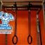 ขาย ห่วงยิม Gymnastics Rings(Gym Rings) thumbnail 7